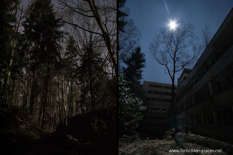 Joseph Lemaire's Sanatorium - (c) Forbidden Places - Sylvain Margaine - 8 - The sanatorium is surrounded by a forest.