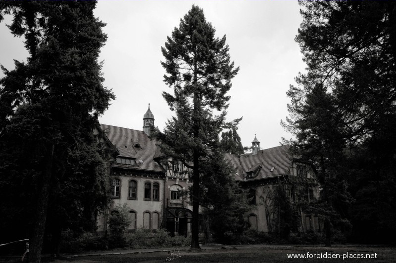 Beelitz-Heilstätten Sanatorium - (c) Forbidden Places - Sylvain Margaine - 11 - Lost in the woods...