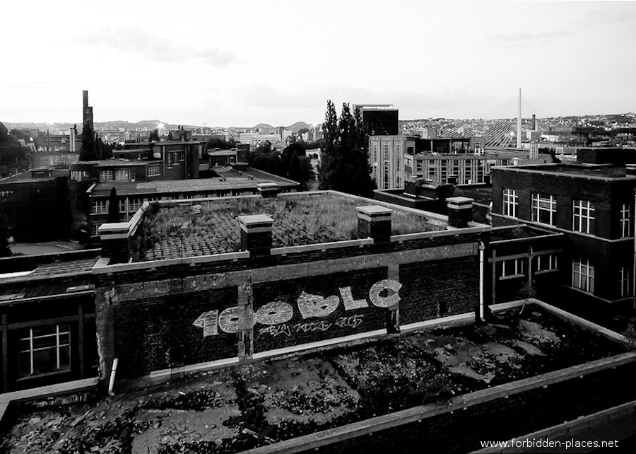 Val Beno�t's University - (c) Forbidden Places - Sylvain Margaine - 7 - Rooftops.